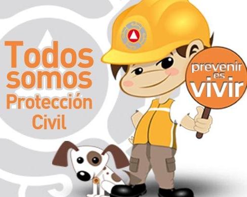 proteccion vivil